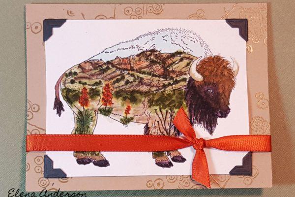 Zig Brush Markers Landscape Inside a Buffalo - Front