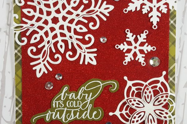 Elizabeth Craft Designs True Red Silk Microfine Glitter Archives